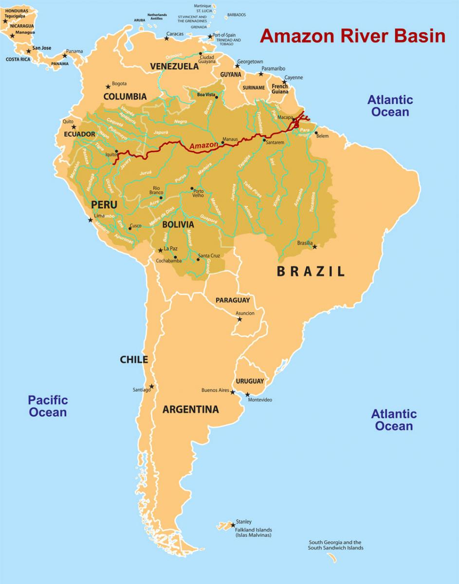 Rainforest rescue valerie biel this map shows south america with the amazon river basin highlighted you can see both the city of manaus and the rio negro black river which are gumiabroncs Images